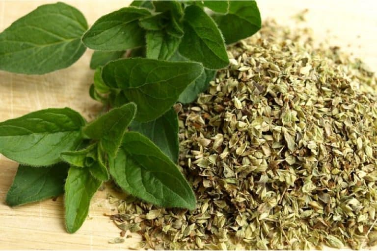 What's the best way to include oregano in my pregnancy diet