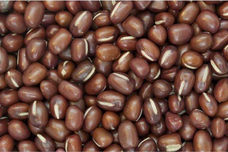 Why should you include adzuki or red beans in your pregnancy diet