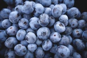What are the nutritional benefits of having blueberries during pregnancy?