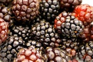 What are the health benefits of eating boysenberries during pregnancy