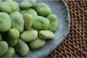 What precaution do I need to take with broad beans during my pregnancy?