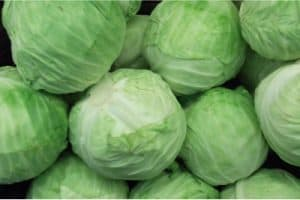 What good does cabbage do for pregnant women