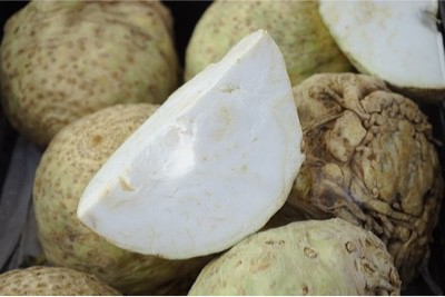 Why is celeriac unsafe for pregnant women