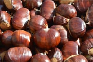 What are the benefits of having chestnuts during pregnancy