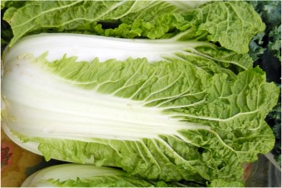 Are you sure leafy veggies like chinese cabbage are fine during pregnancy