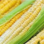 Can I be absolutely sure about including corn in my pregnancy diet