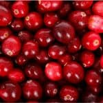 What are the benefits of having cranberry beans during pregnancy