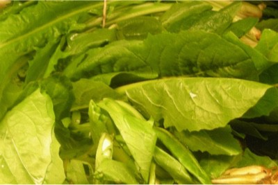 Why shouldn't I eat dandelion greens when pregnant