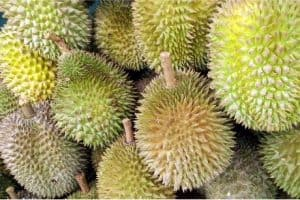 How does durian help in prenatal nutrition during pregnancy?