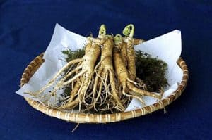 Can I consume Ginseng during pregnancy to boost immunity?