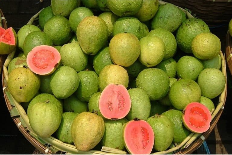 What are the benefits of having guavas during pregnancy