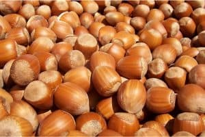 What are the nutritional benefits of having hazelnuts during pregnancy?