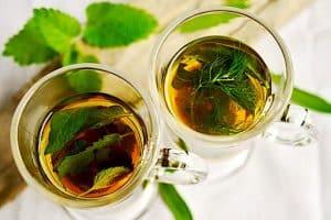 Is peppermint tea helpful in fighting nausea during pregnancy?