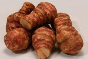 How safe are jerusalem artichokes for pregnant women?