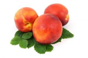 Why should I be cautious while having nectarines during pregnancy?
