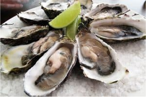 Are oysters better than eating other seafood during pregnancy?