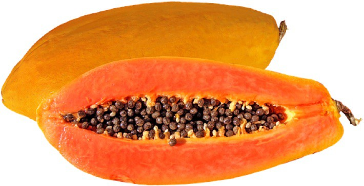 Papaya is said to be unsafe during pregnancy. Is it a fact or a fable