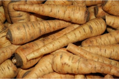 How about including parsnips in my pregnancy diet