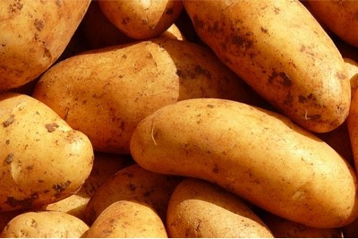 How can eating potatoes help pregnant women