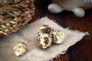Are quail eggs as nutrient-rich as chicken eggs during pregnancy?