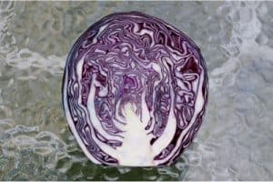 Should I consult a doctor about eating red cabbage during pregnancy?
