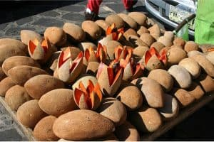 What are the nutritional benefits of having sapote mamey during pregnancy?