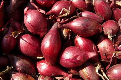 Can shallots in my diet help my pregnancy