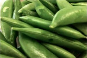 Are there any benefits of eating snap beans during pregnancy
