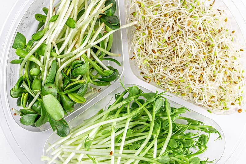 Are sprouts such as bean sprouts