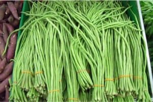 What nutrients do yardlong beans help pregnant women with?